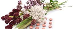 pictures-of-herbal-medicine